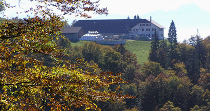 Restaurant Untergrenchenberg - Carfahrten